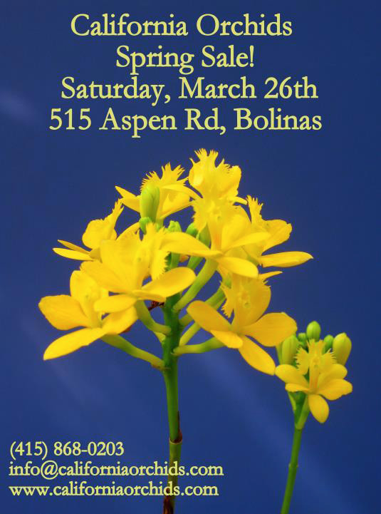 2016 California Orchids Spring Sale
