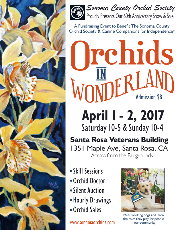 "Sonoma County Orchid Society ""Orchids in Wonderland"" Spring Show & Sale"