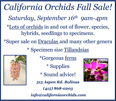 2017 09 California Orchids Fall Sale
