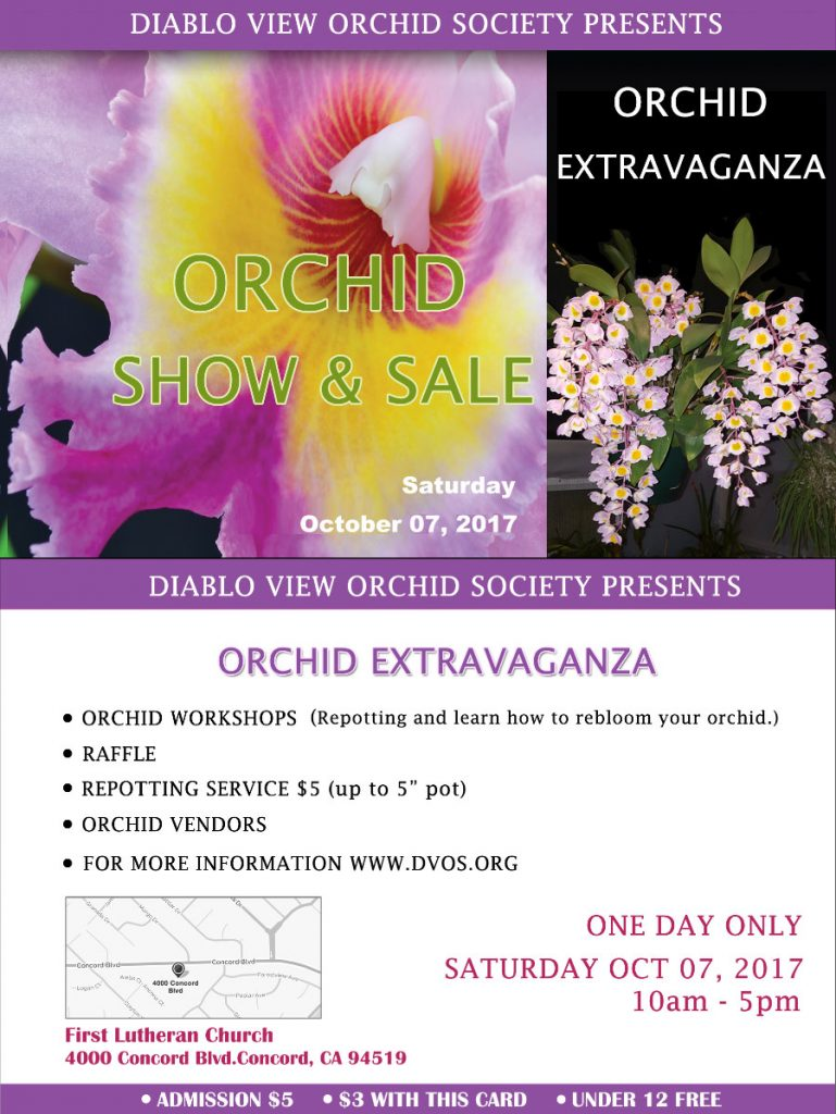 Diablo View Orchid Society Show & Sale