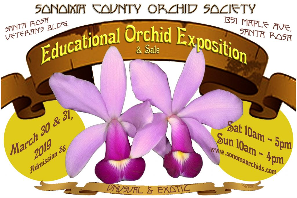 2019 SCOS Show Educational Orchid Expo & Sale