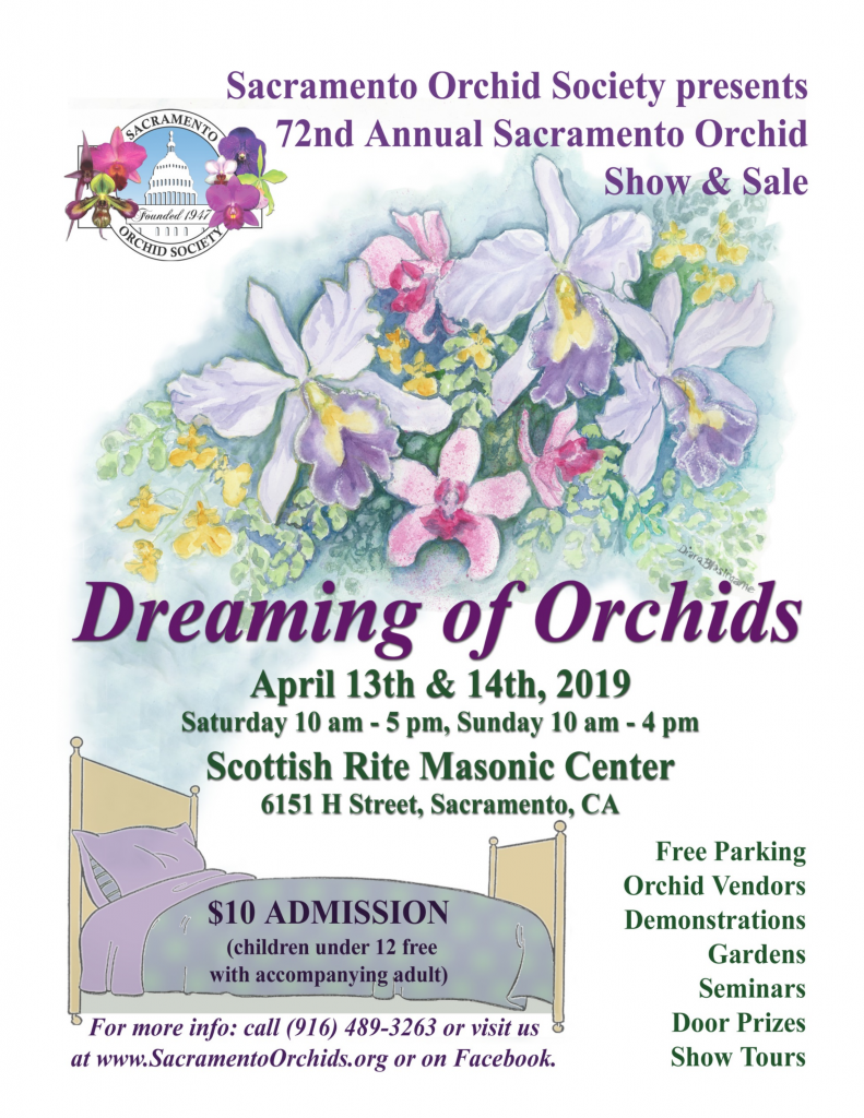 2019 Sacramento Show Dreaming of Orchids
